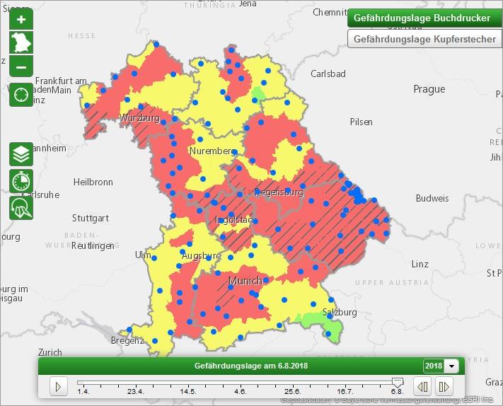 LWF: Interaktive Karte zum Borkenkäferrisiko