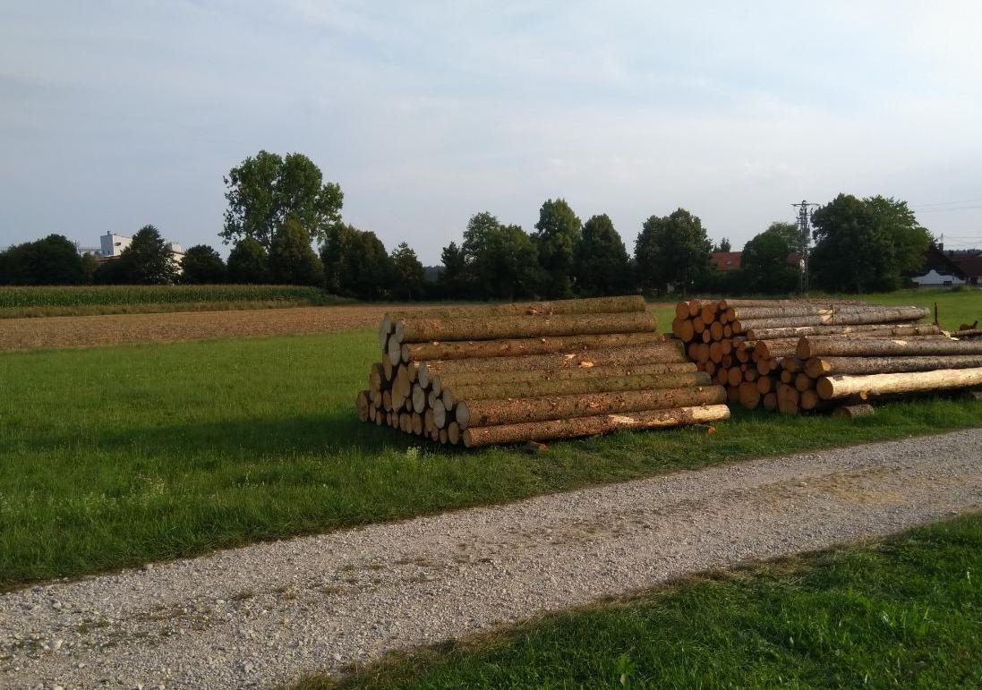 Käferholz auf Landwirtschaftlich genutzten Flächen lagern?