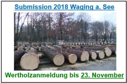 Wertholzsubmission 2018